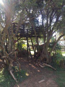 Tree house built by Antony